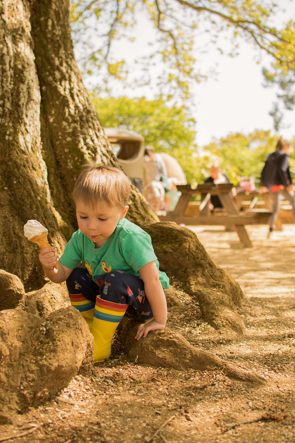 3 year old pre-schooler boy eating ice-cream and playing on the trees wearing Little Bird rainbow wellies and Frugi tractor t-shirt at Cotswold Wildlife Park with family