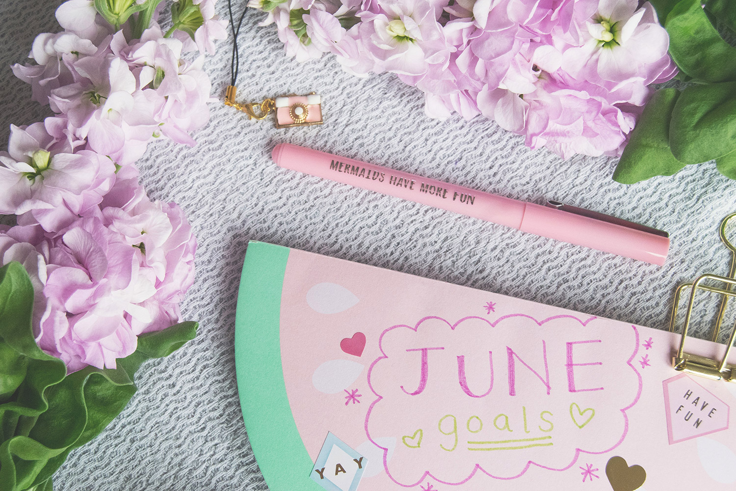 June goals - Watermelon notepad, doodles, mermaid pens and purple stocks flatlay with Homesense taken on a NikonD3300