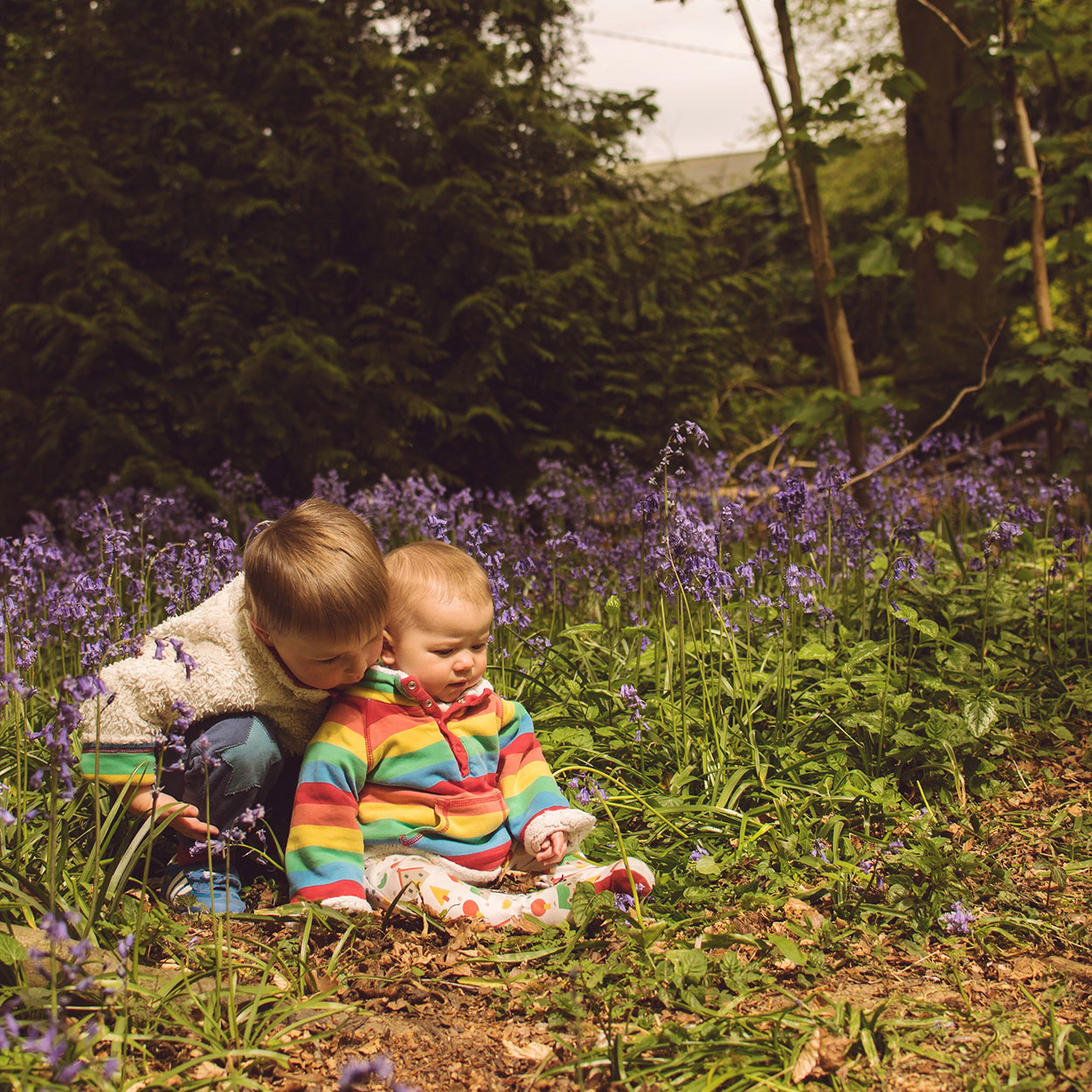 The Siblings Project {May 2017}