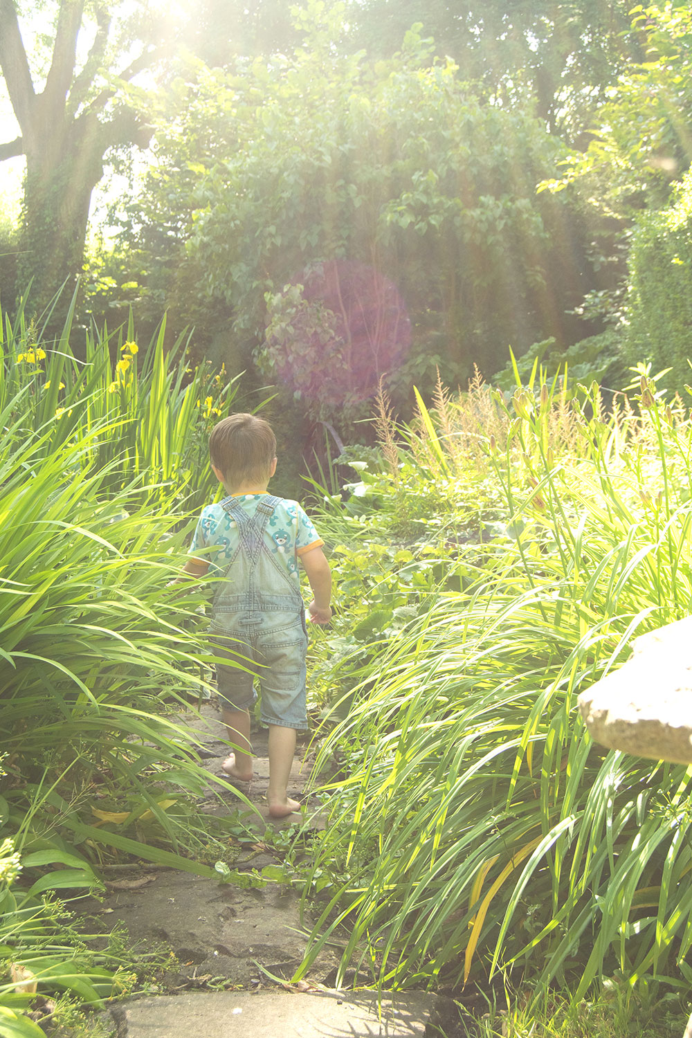 The Magic of a Waterfall {To Adventure #1} - Young boy wearing Maxomorra seal print t-shirt and denim dungarees playing in a magical garden and wading in a stream and waterfall fishing amongst the plant life and swinging on the bridge